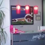 Centros de depilación: Eviten el plagio de pinturas