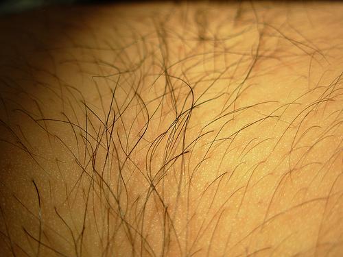 Manual de la depilación láser – El Pelo
